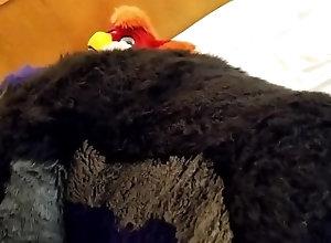 fursuit;murrsuit;bareback;blowjob;furry;bull;gryphon;avian;bird;anal;femboy;thigh-socks,Bareback;Gay;Amateur;Uncut Bull fursuiter...